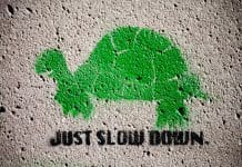 Green Turtle Stencil with Sign Reading Just Slow Down