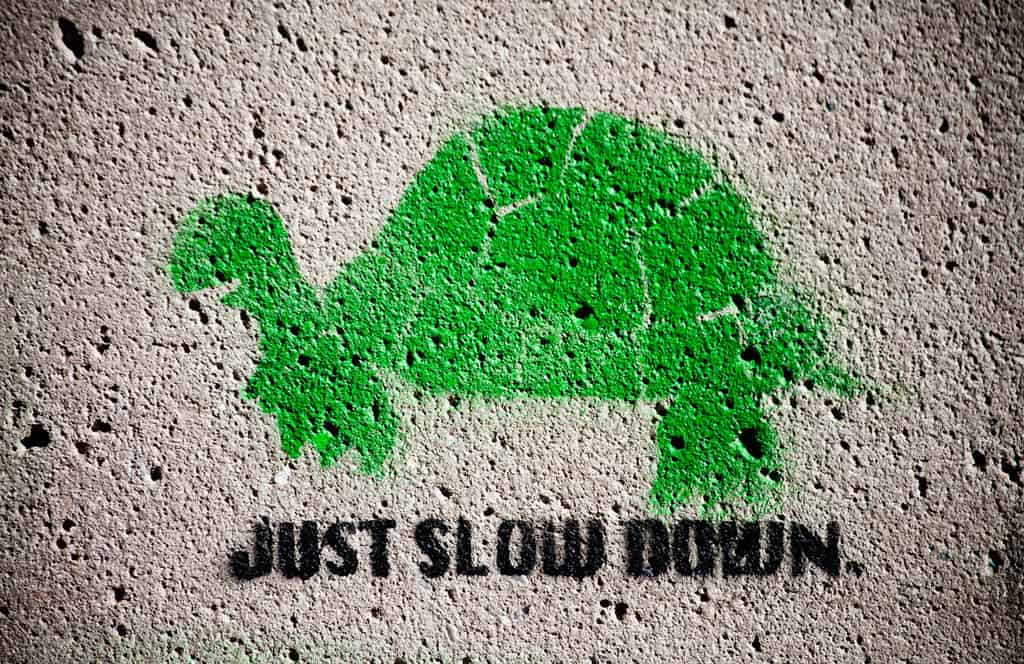 in praise of slow book review