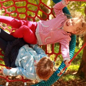 Children on web swing