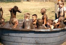 Outdoor mud tub filled with boys