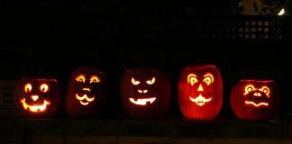5 Jack o Lanterns Sitting on a Fence