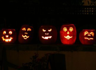 5 Jack o Lanterns Sitting on a Fence