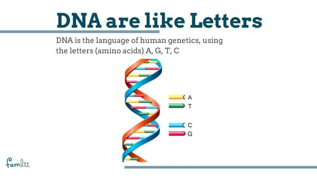 What is DNA graphic